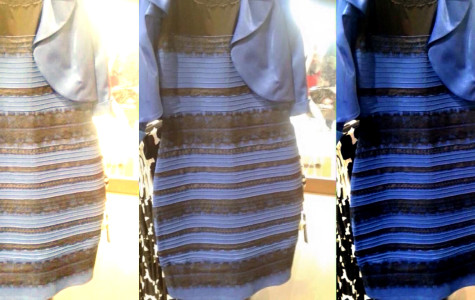 "The true identity of ""the dress"""
