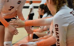 Lady Tigers Volleyball Team sums up a great season
