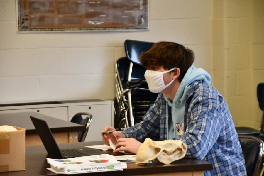 Chagrin+students+prepare+for+AP+exams